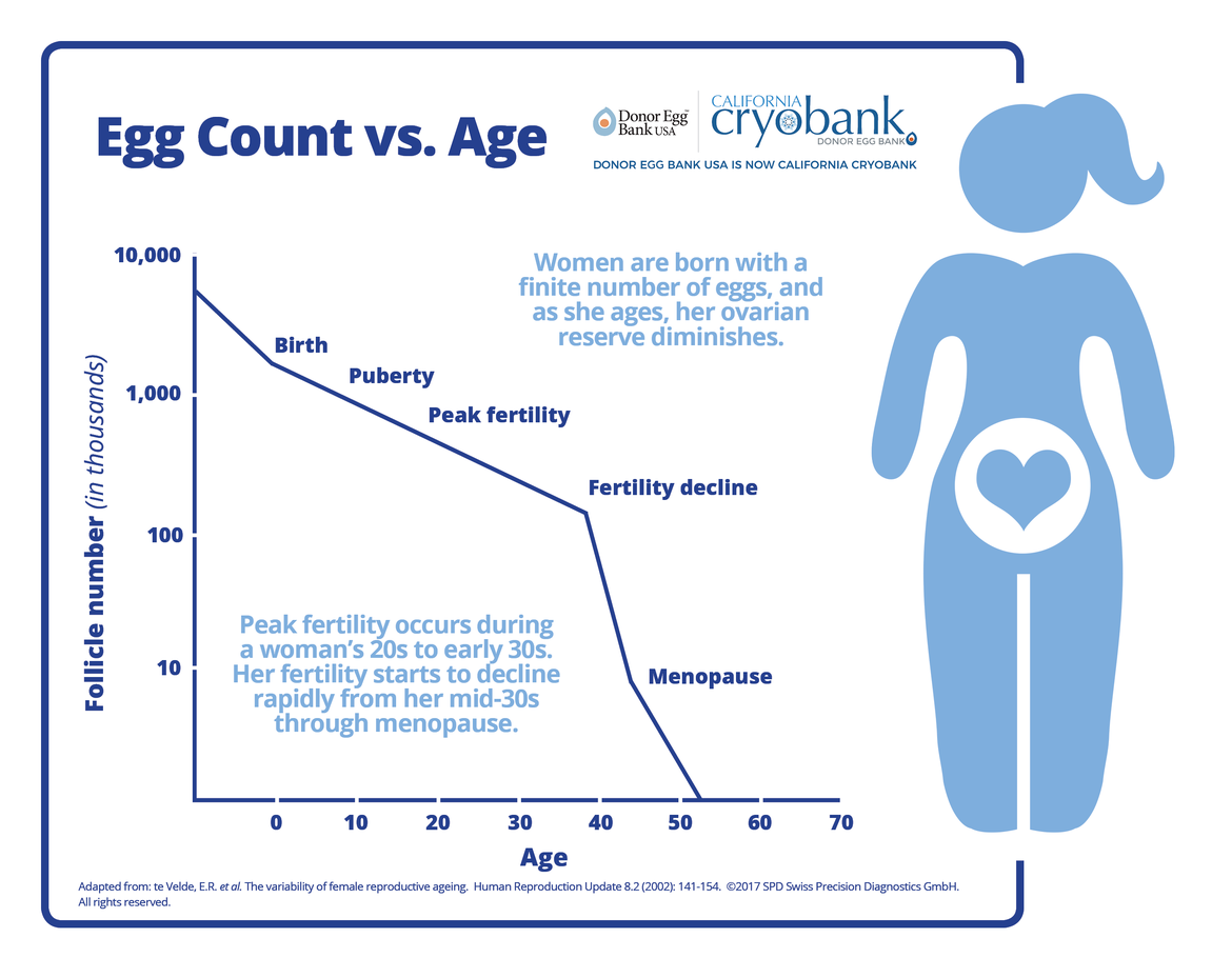Egg Count vs. Age