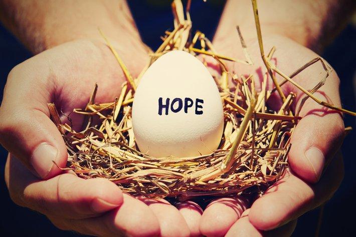 Empty Nest- hope